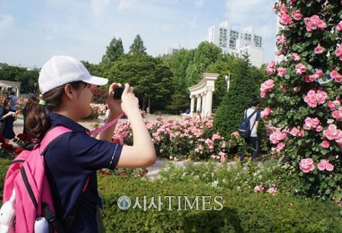 프로젝트룩, 발달장애 청소년들의 꿈과 희망 담은 사진전 개최