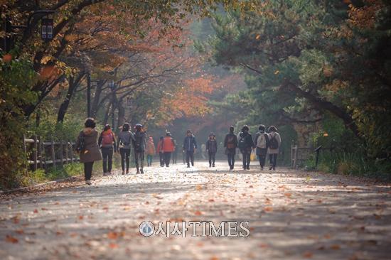 서울시, 11월3일 남산둘레길 걷기 축제 개최