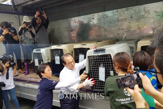 """동물보호단체들, """"부산시 구포 개시장 폐업 환영…개식용 종식 이정표 될 것"""""""